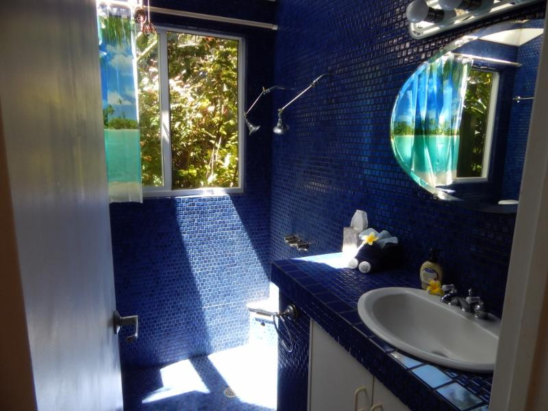 Beautiful blue tiled bathroom or be adventurous and choose to shower outside in a private shower