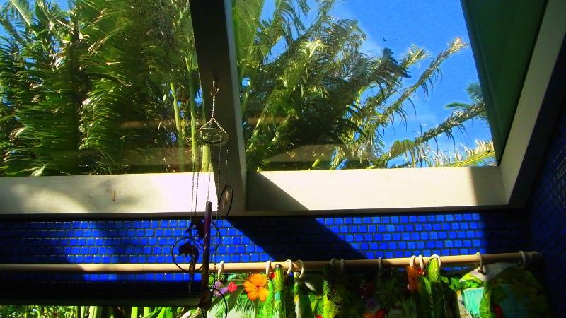 Great tropical skylight views from your quaint blue tiled bathroom