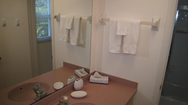 Main bathroom with separate commode.