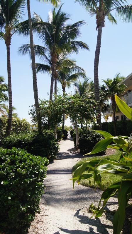 The pathway to the beach.