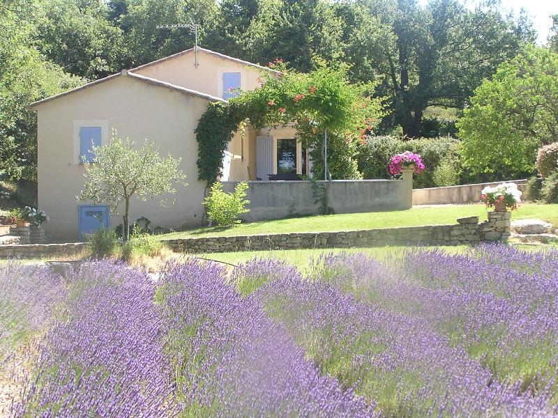 JDV Holidays - Villa St Fleurie, Bonnieux, vacation rental in Bonnieux