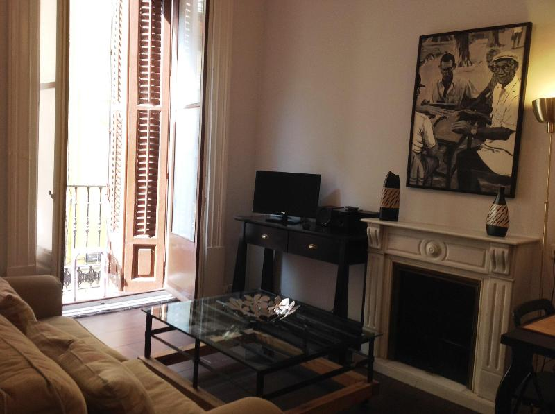 Fantastic Apartment  in the very heart of Madrid, holiday rental in Madrid