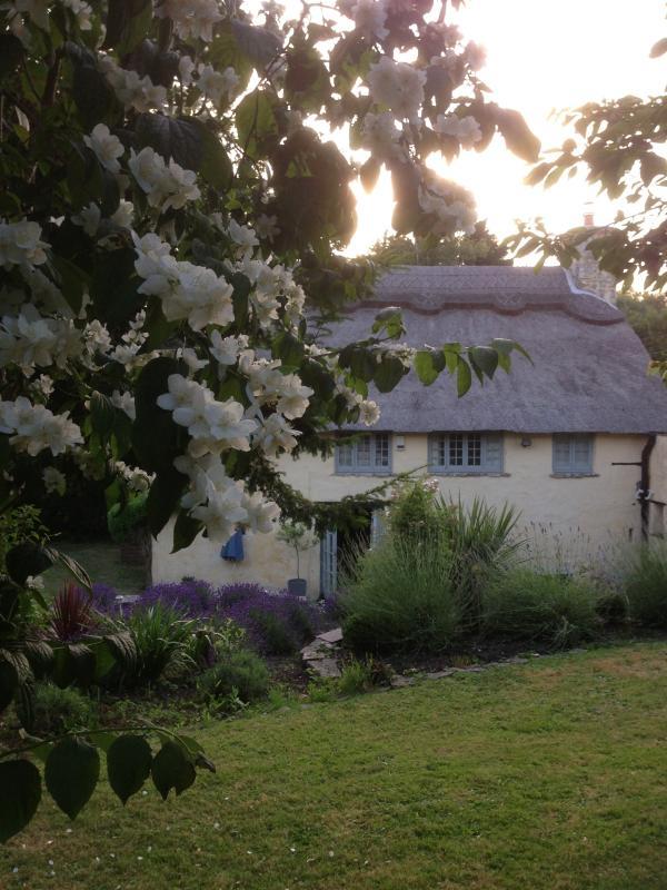Summer view from the rear garden