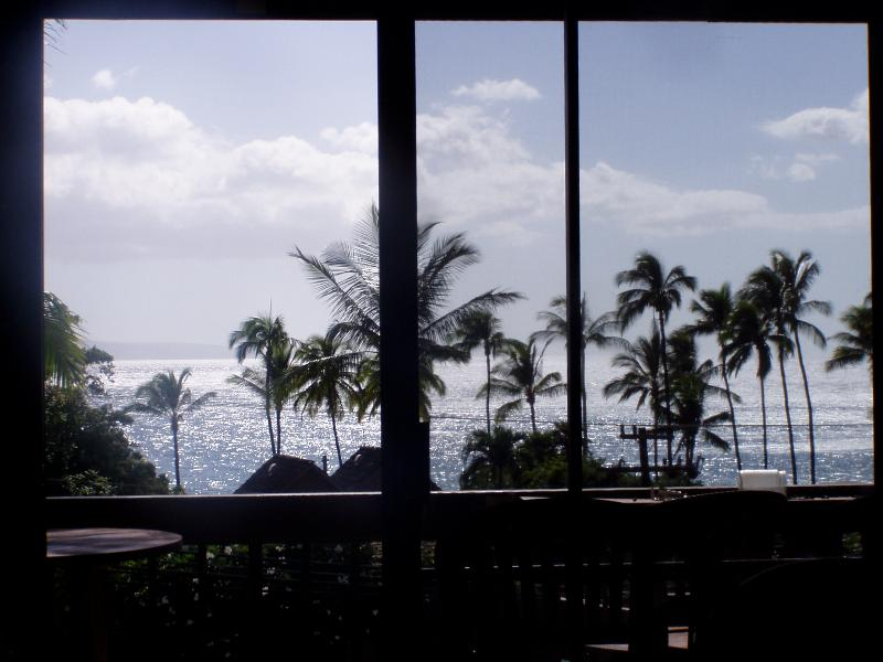 View from inside condo....ocean is right there