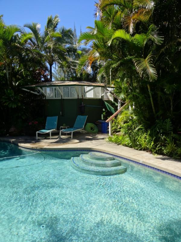 Vår 44ft fri form pool