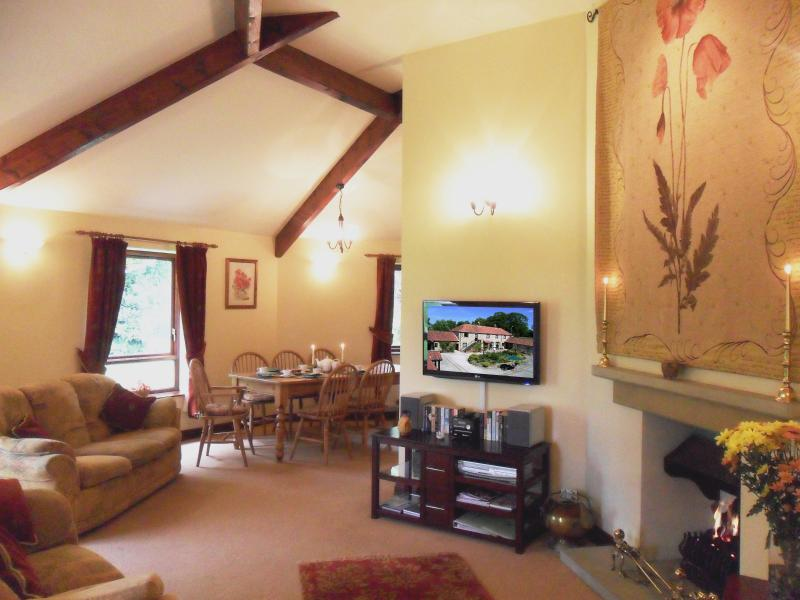 Pasture View sitting room with open dog grate fire, flat screen tv, DVD, DAB radio & CD player