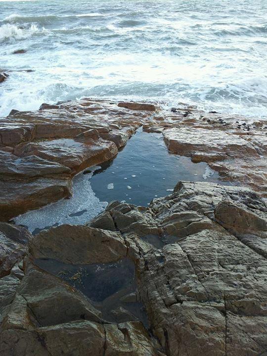 The rock pool.