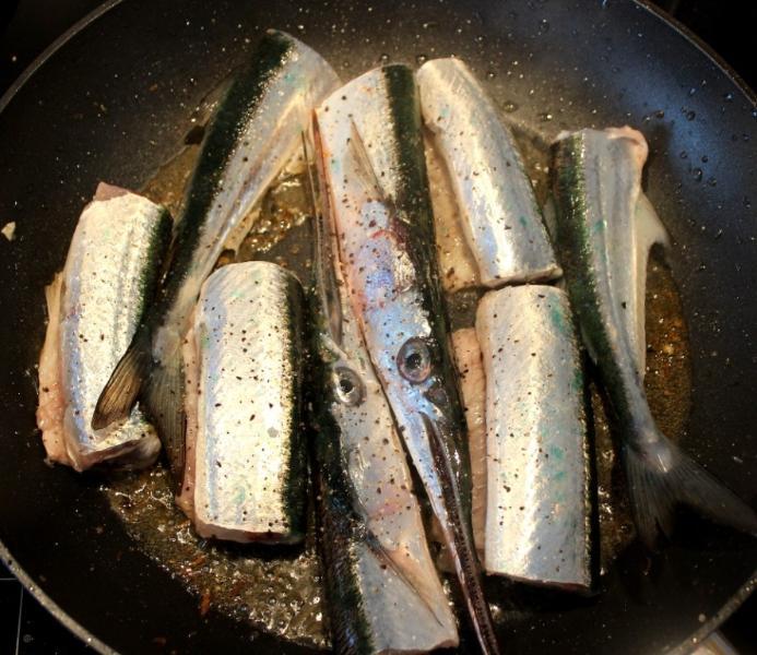 Fisch aus dem Hafenbecken