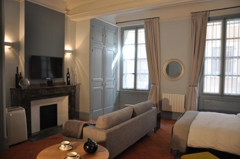 Suite Voltaire, boutique studio apartment, holiday rental in Carcassonne Center