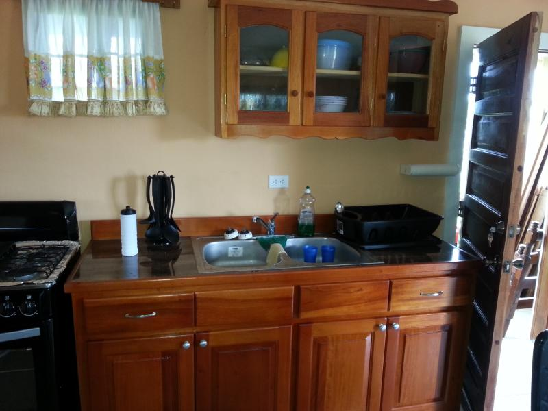 Kitchen counter/sink