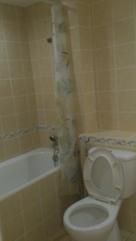 Bathtub shower master room
