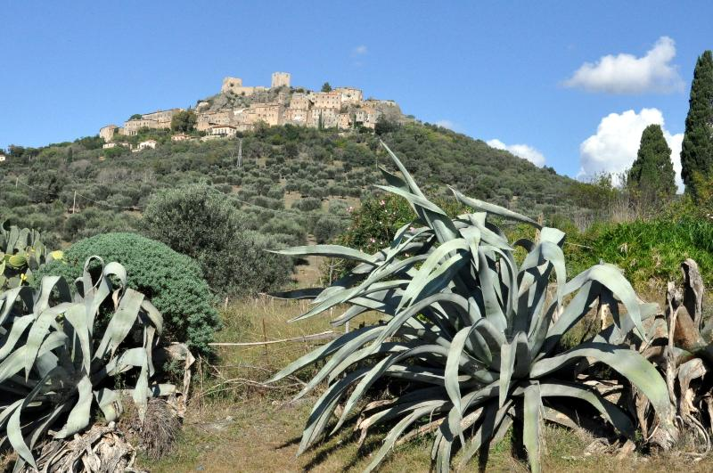 The medieval village of Montemassi offers spectacular views from the ruined castle. Just 2 km away.