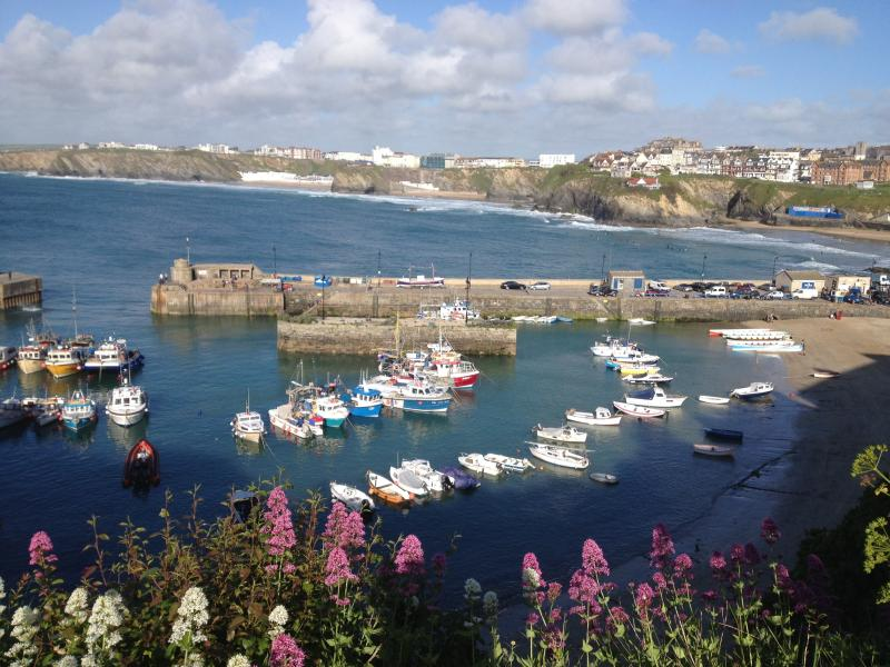 Beach View House, vacation rental in Newquay
