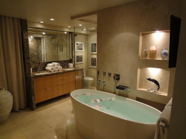 Bagno padronale è come una spa.  Le pareti di pietra e finiture high-end in tutto!
