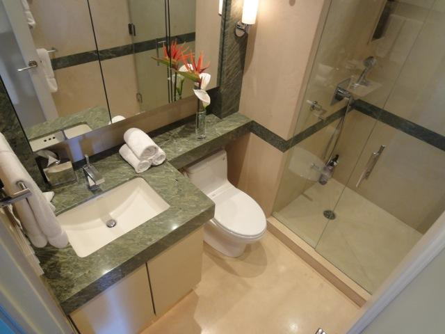 Bagno per gli ospiti rivestito in calcare e granito.  Plafoniera a pioggia nella doccia.