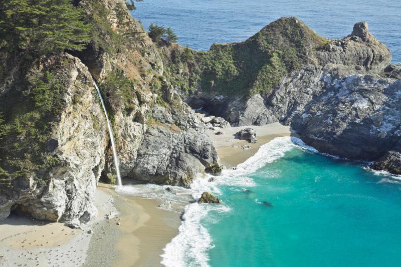 3729 Ocean Park Sanctuary-  ~