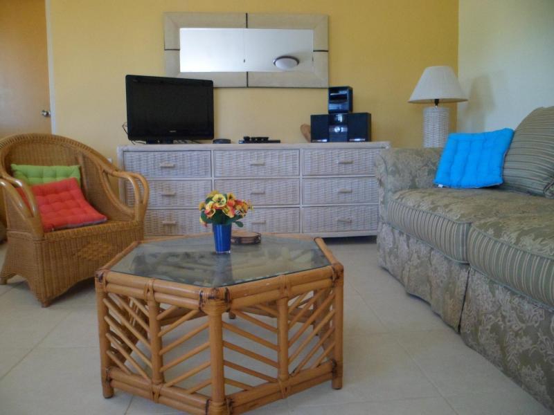 ARUBA JEWEL HAS CABLE TV, DVD AND AUDIO EQUIPMENT