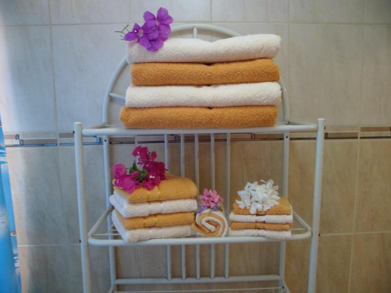 ARUBA JEWEL LOTS OF TOWELS