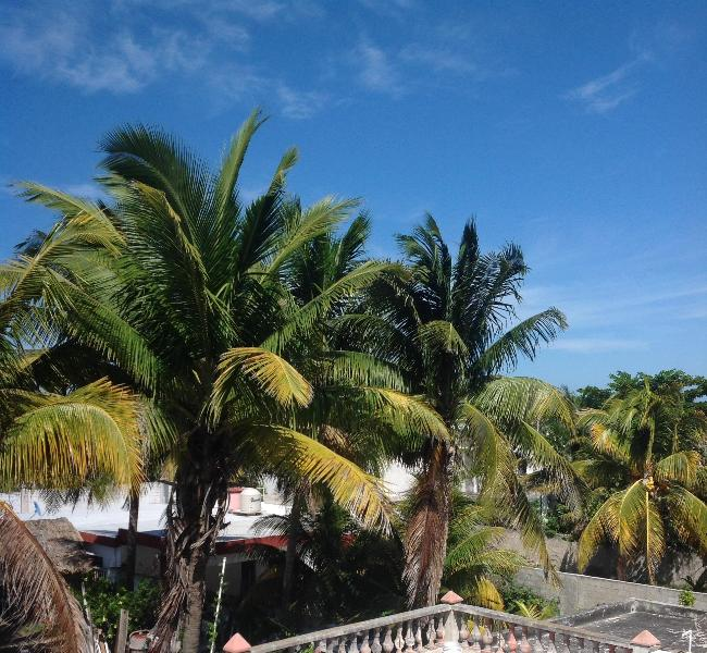 View out of bedroom towards the Gulf of Mexico, great breezes