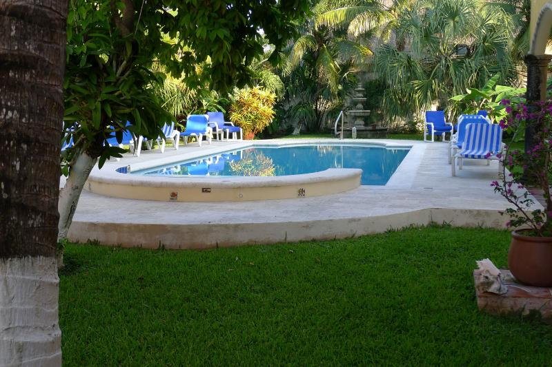 An oasis in the heart of San Miguel., vacation rental in Cozumel