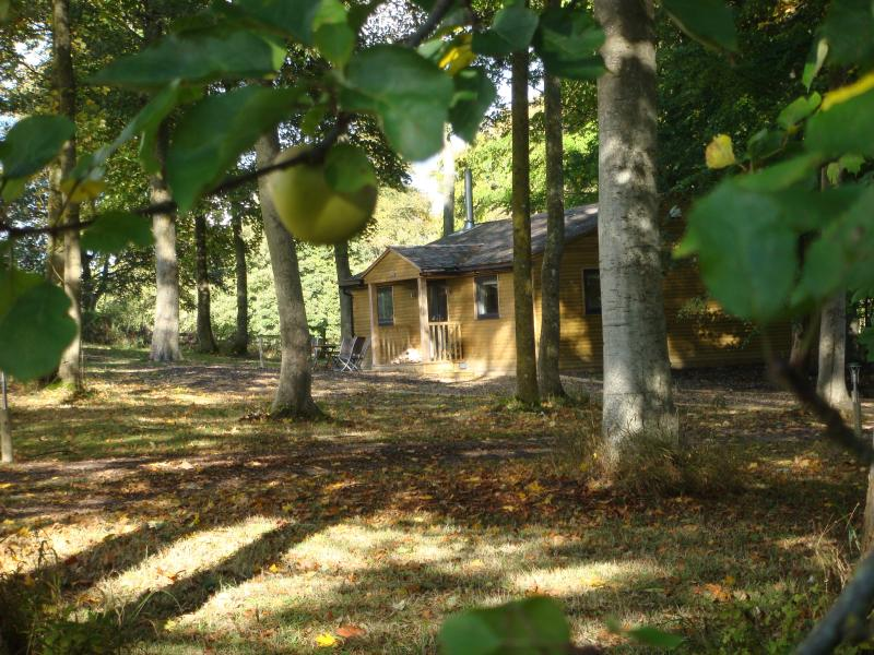 The Apple Wood - Honey Crisp luxury cabin with underfloor heating and 2 ensuite bedrooms