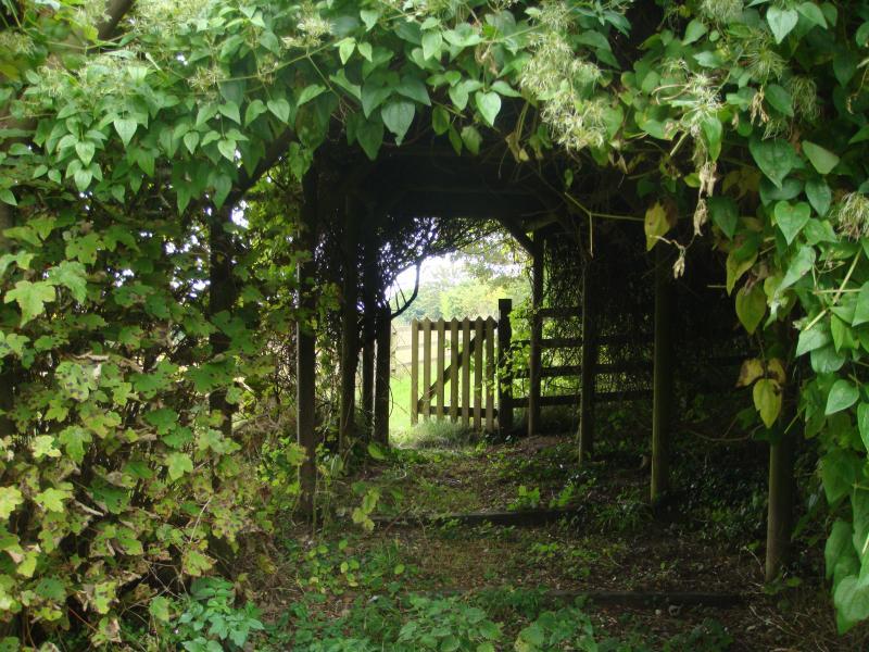 Gehen Sie weg und Tor an der paddocks