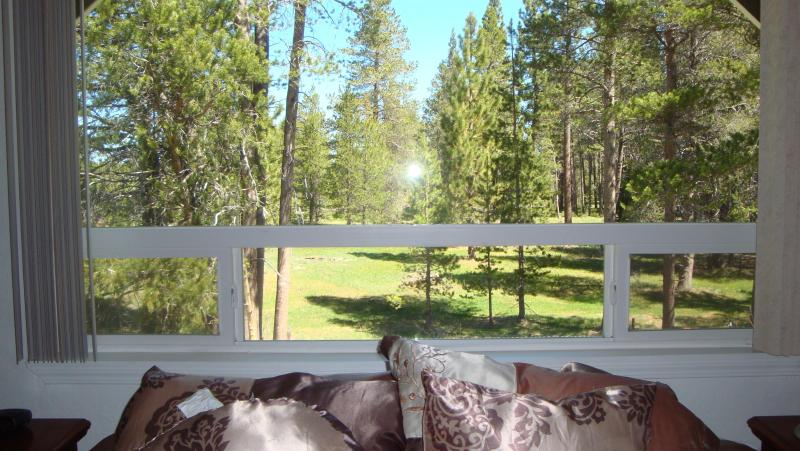Master Bedroom Meadow View