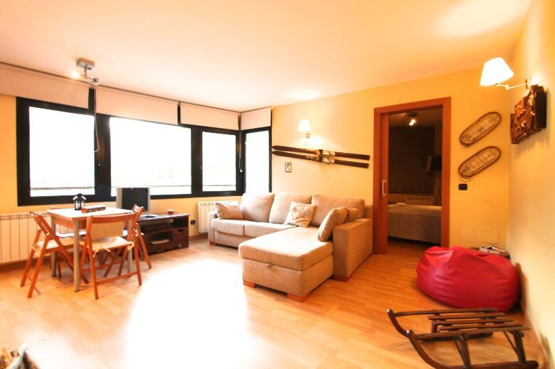 Incles para 4 a 5 min. grandvalira, holiday rental in Porte-Puymorens