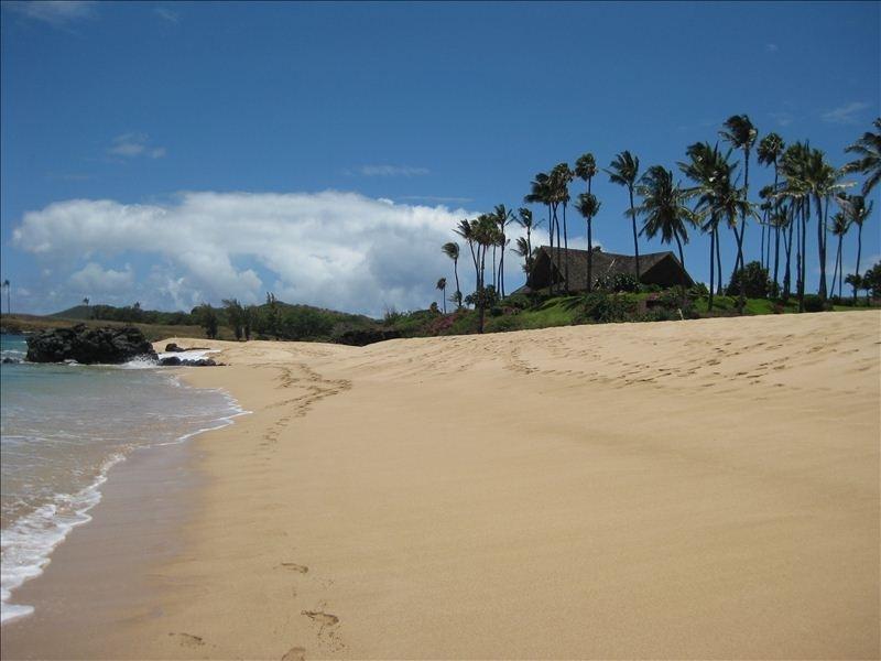 'Must Visit' Ocean View Peaceful Retreat, Ferienwohnung in Molokai