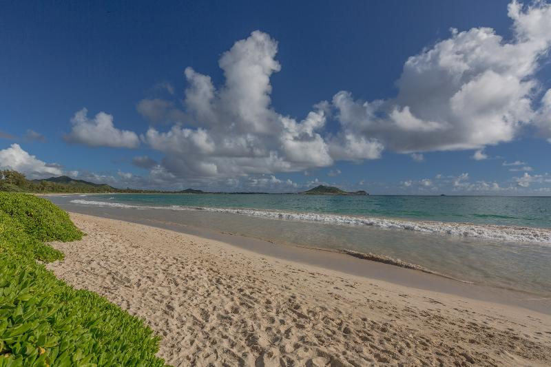Kailua Beach Just a very short walk from the property