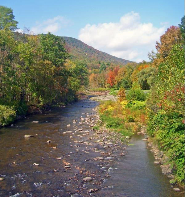 Fall on the Esopus