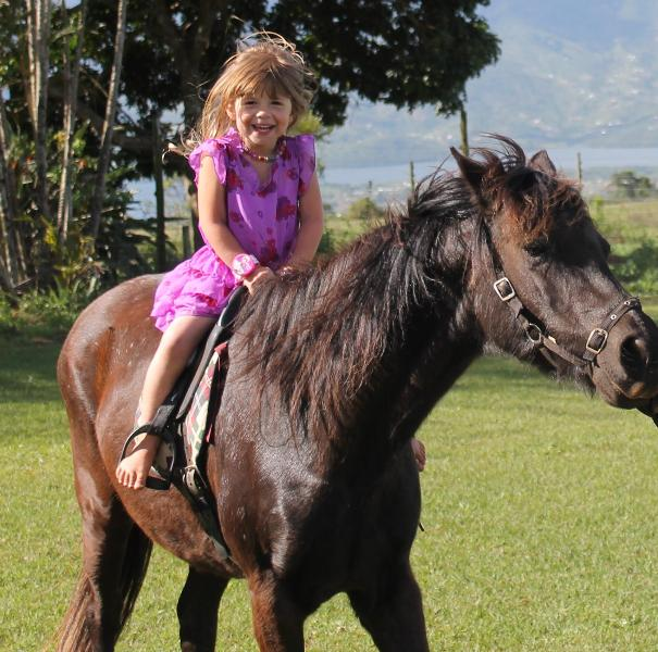 Pony rides for children on weekends