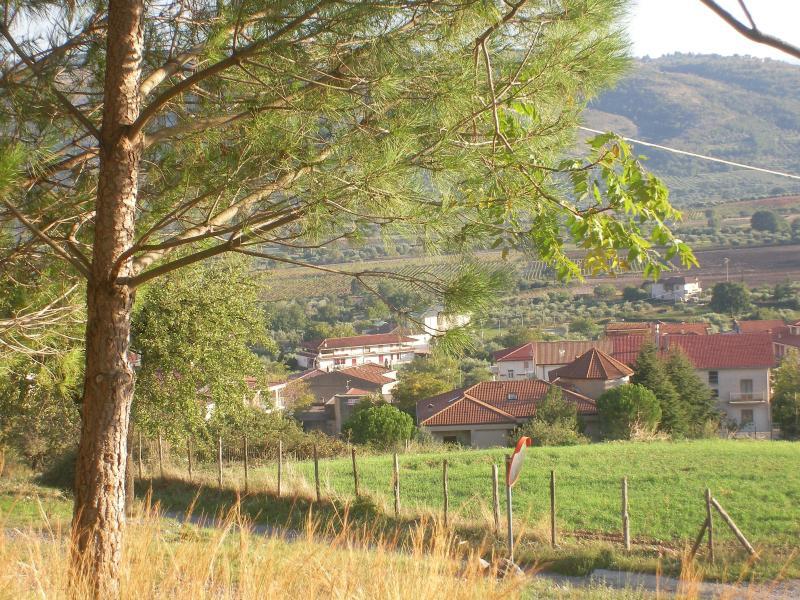B&B Amarcord Camera 'Le Viole', casa vacanza a Tarsia