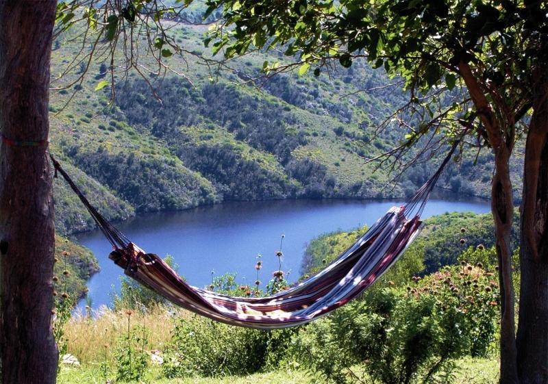 Akasha Mountain Retreat, vacation rental in Heidelberg
