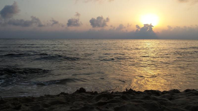 Calaviolina Beach
