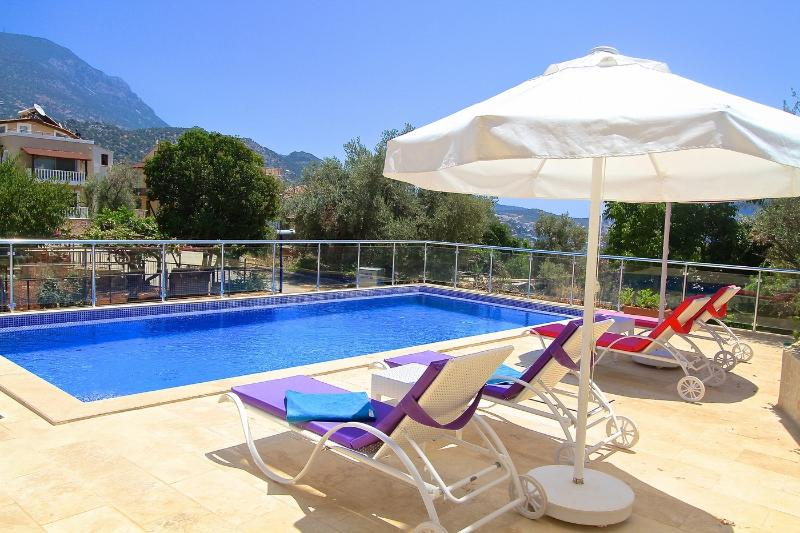 Spacious terrace with large private pool