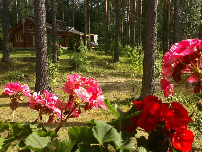 Luxury holiday home at Taipalsaari, East Finland, holiday rental in Lemi