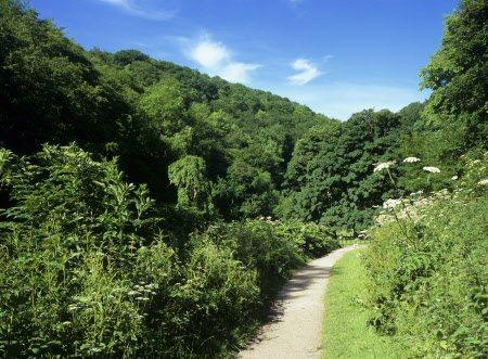 Nearby Manifold Valley Cycle Trail