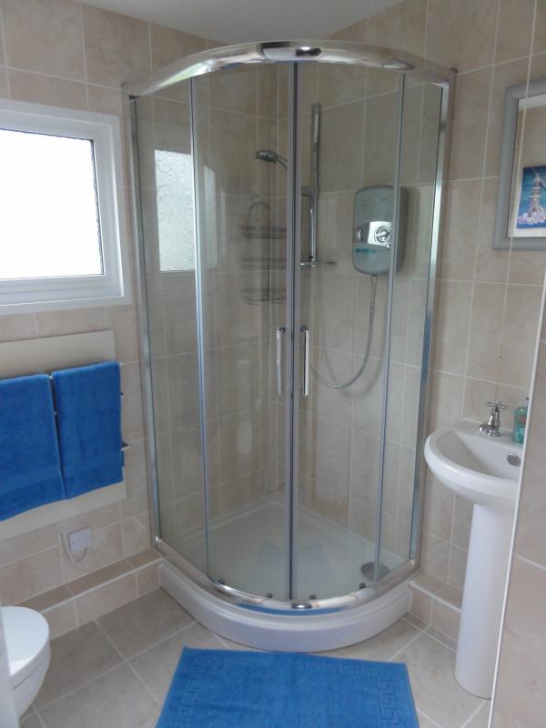 Douche électrique en coin pleine grandeur