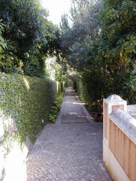 Chemins de propriété