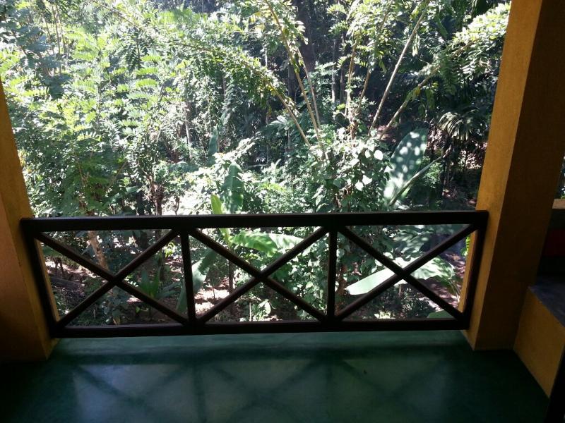 Balcón con vistas al bosque de reserva