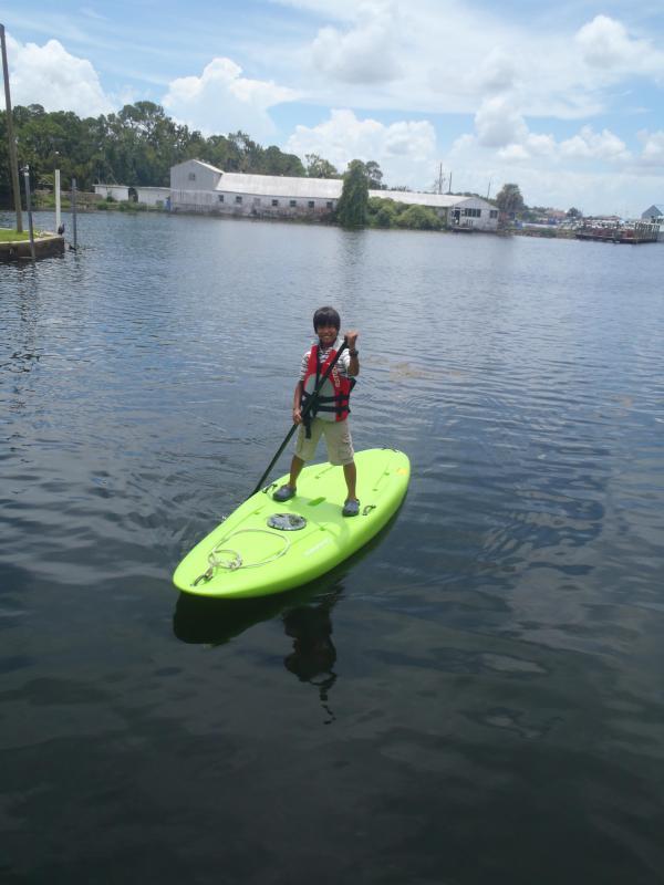 Kayaks adicionales y paddleboards disponibles de submarino de pájaro