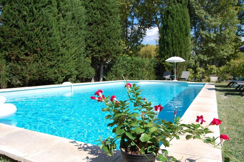 LA BASTIDE DES JONCQUIERS, vacation rental in L'Isle-sur-la-Sorgue