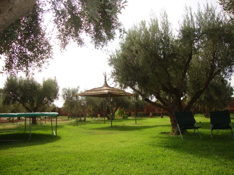 Garden and play area