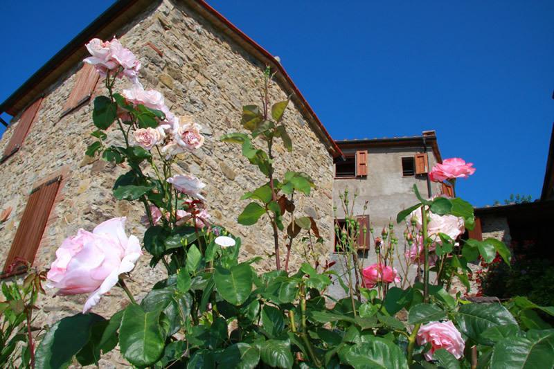 Ribocciolo, holiday rental in Montieri