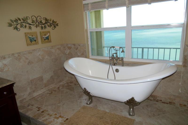 The 3rd floor master bath tub