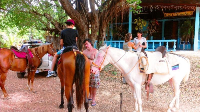 Detrás del caballo gira junto a casa