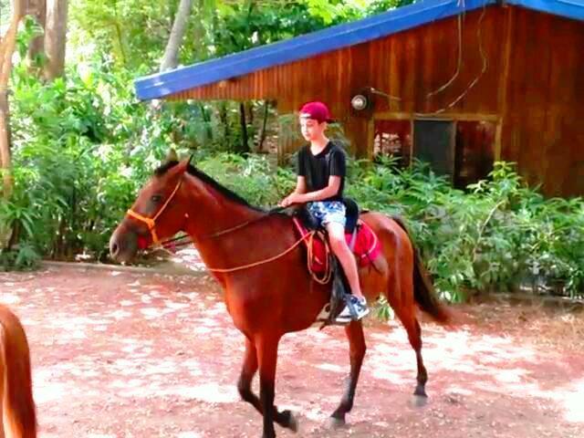 Playa Grande caballo gira al lado de casa