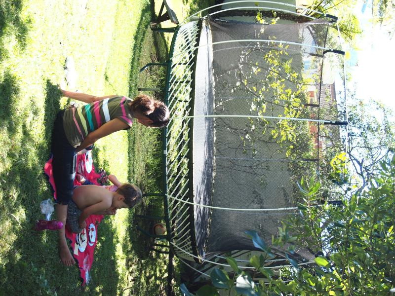 Backyard picnics
