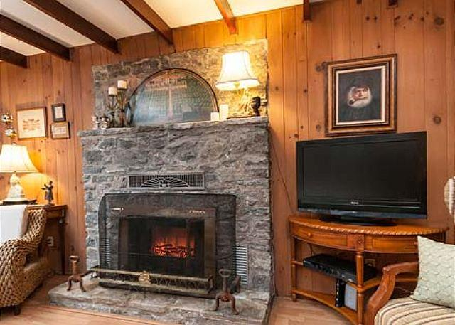 Living Room with gas logs